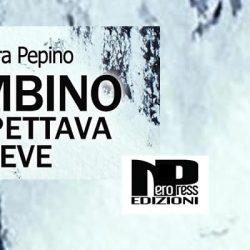 Il bambino che aspettava la neve Alessandra Pepino Nero Press Edizioni letturedikatja.com