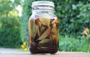 Liquore cento foglie di marena di Nonna Raffaella ricetta fai da te letturedikatja.com