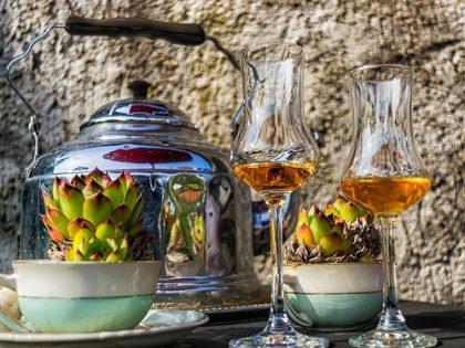 Liquore cento foglie di amarena di Nonna Raffaella