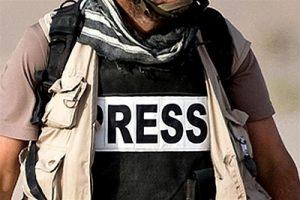 Professione reporter Gianni Perrelli Di Renzo Editore letturedikatja.com