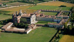 La tisana anti colesterolo dei monaci cistercensi Certosa di Pavia letturedikatja.com